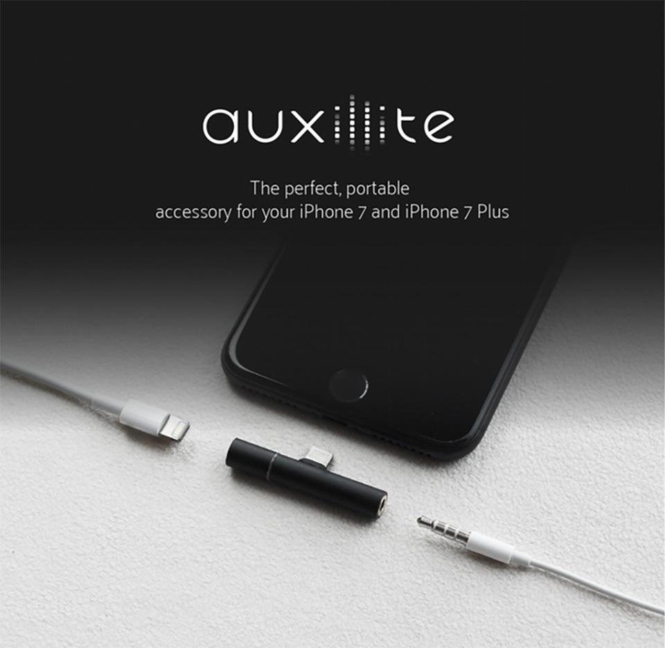 3893150_auxillite-4